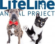 lifeline animal image
