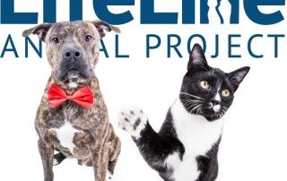 lifeline animal image