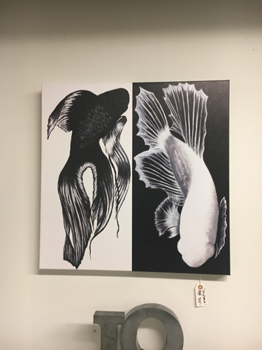 ying and yang, koi fish, black and white, local art