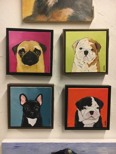 dog pictures, portraits , custom dog portraits